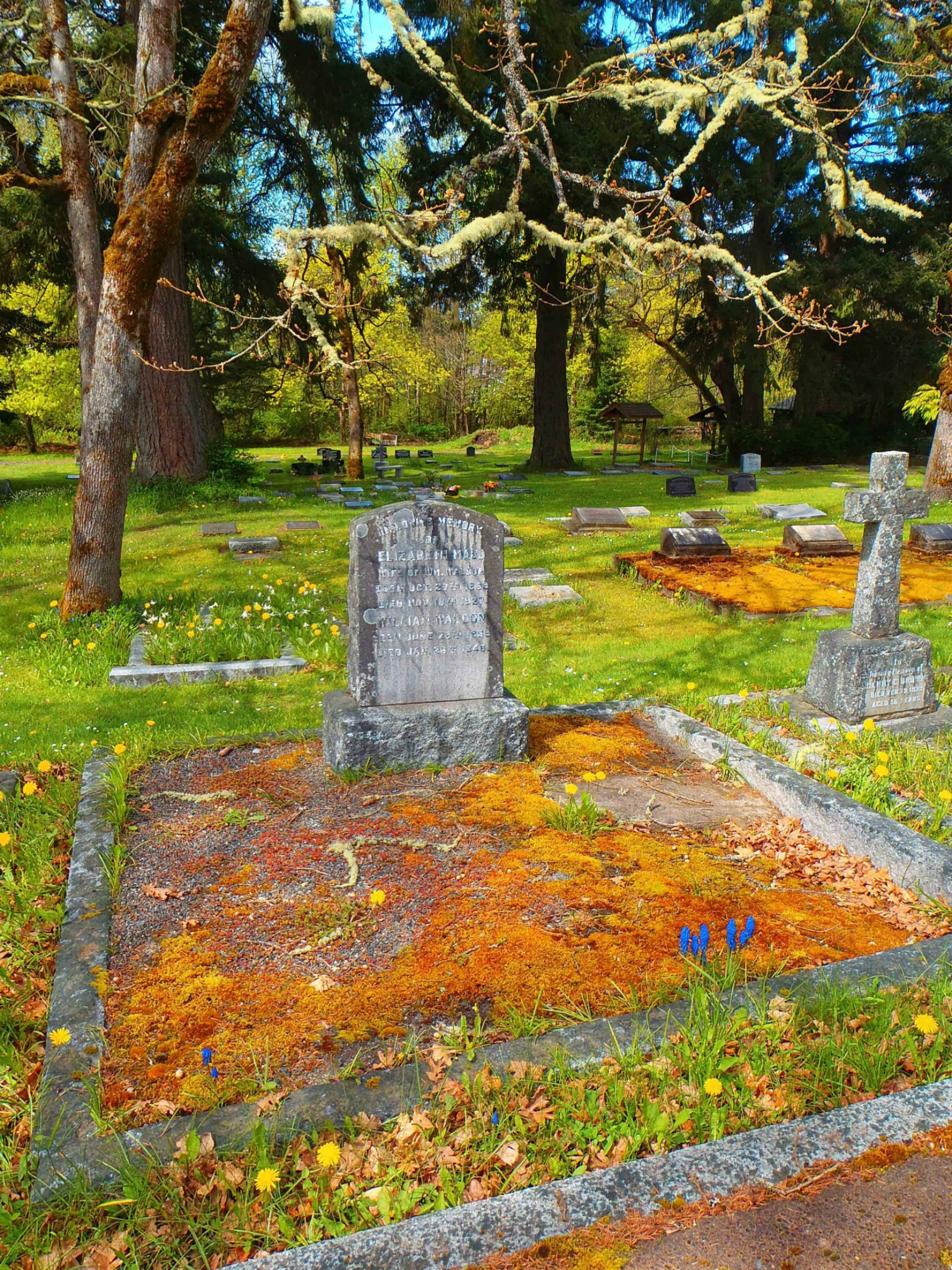 William Waldon grave, St. Peter's Quamichan cemetery, North Cowichan, B.C.